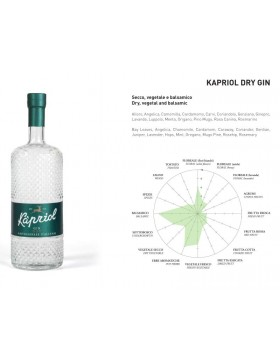 Kapriol Dry Gin