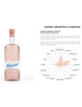 Kapriol Grapefruit & Hibiscus